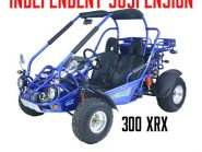 Trailermaster 300 XRX Buggy