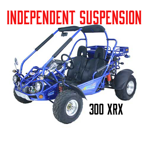 Trailmaster 300 XRX Buggy
