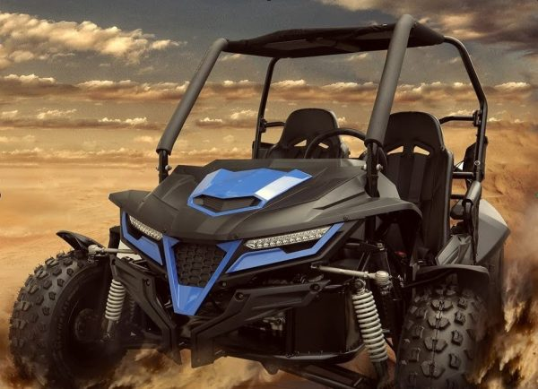 Trailmaster 300 Cheetah Buggy (Out Of Stock)