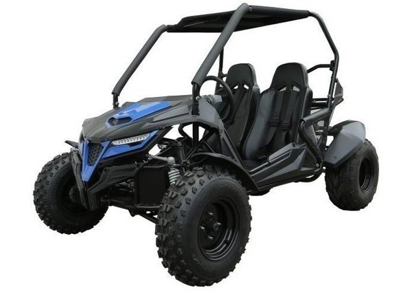 Trailmaster Cheetah 170 Off Road Buggy